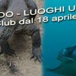 Info WAC 10-2017: rientro da Bali e Komodo; Presentazione corsi e ultimi posti per Ustica